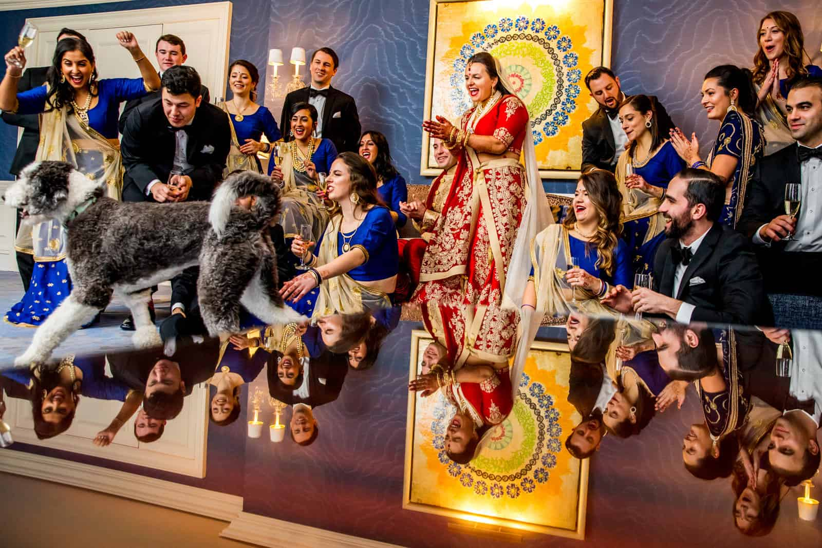 Indian Wedding Party Dog Portrait